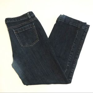 Ann Taylor Modern Fit Lindsay Waist Jeans Size 12